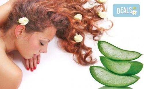 Релаксиращ или болкоуспокояващ масаж на цяло тяло с масла от макадамия, алое или цитрус в Chocolate Studio!