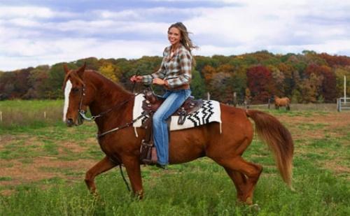 Аристократично удоволствие! 60 минути Конна езда с Водач + бонус стрелба с лък от Конна База София - Юг