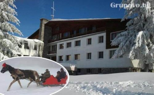 Коледа до Габрово! 2 Нощувки със Закуски и Празнични Вечери + Разходка с Шейна от Хотел Еделвайс, М. Узана