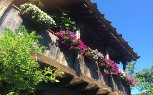 Лято 2018 за Двама в Стефанина Къща, Боженци