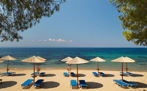 Ранни Резервации: 5 Нощувки със Закуски и Вечери в Blue Dolphin Hotel 4*, <em>Халкидики</em>, Гърция през Май!