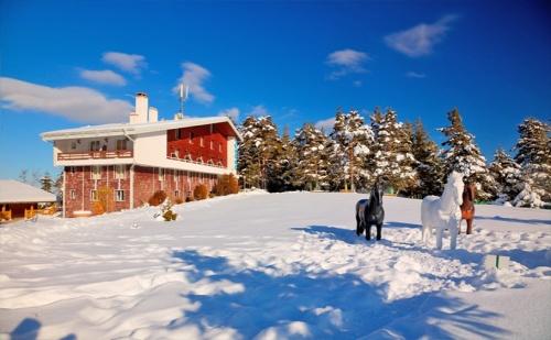 На Ски в Паничище през Декември и Януари! Нощувка със Закуска и Вечеря* в Хотел Луч!