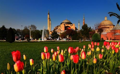 Фестивала на Лалето в Истанбул! Транспорт + 2 или 3 Нощувки със Закуски в Хотел No Name 2/3* и Посещение до Чорлу с Абв Травелс!