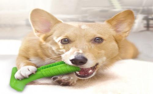 Дентална Гумена Играчка за Кучета