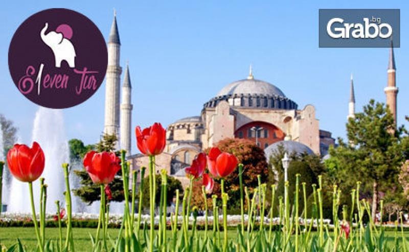 Last Minute Екскурзия до Истанбул за Фестивала на Лалето! 2 Нощувки със Закуски, Плюс Транспорт от София и Пловдив