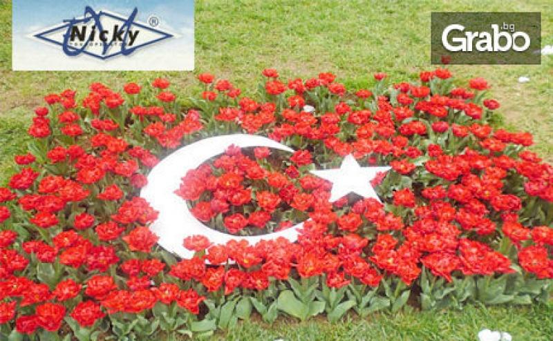 За Фестивала на Лалето в Истанбул! Екскурзия с 2 Нощувки със Закуски, Транспорт и Посещение на Одрин