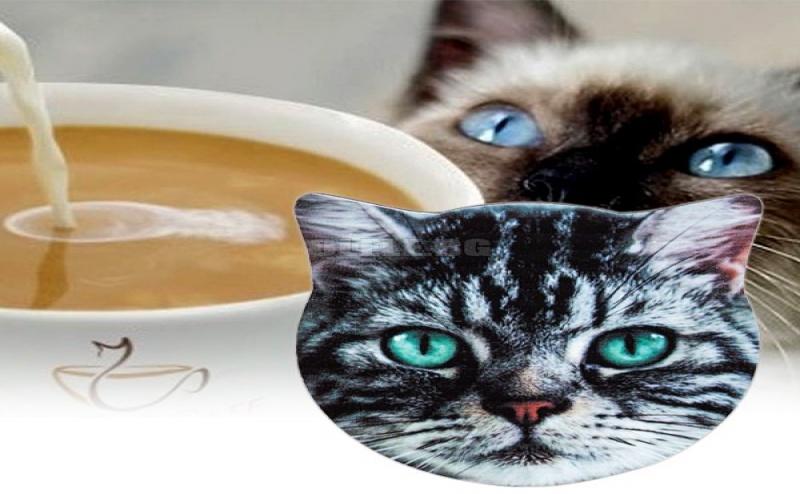 Нестандартна Подложка за Чаши Коте