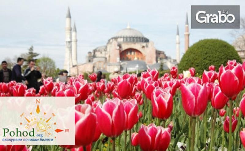 Екскурзия до <em>Истанбул</em> за Фестивала на Лалето! 2 Нощувки със Закуски, Плюс Транспорт и Посещение на Одрин